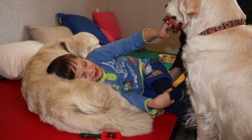 Пет-терапия и канистерапия для взрослых и детей