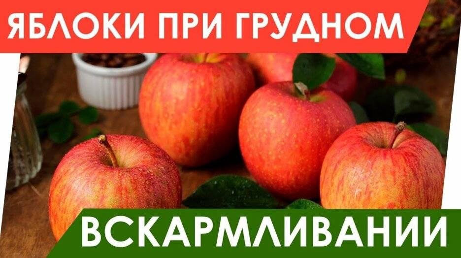 Яблоки при грудном вскармливании: зачем их есть кормящей маме