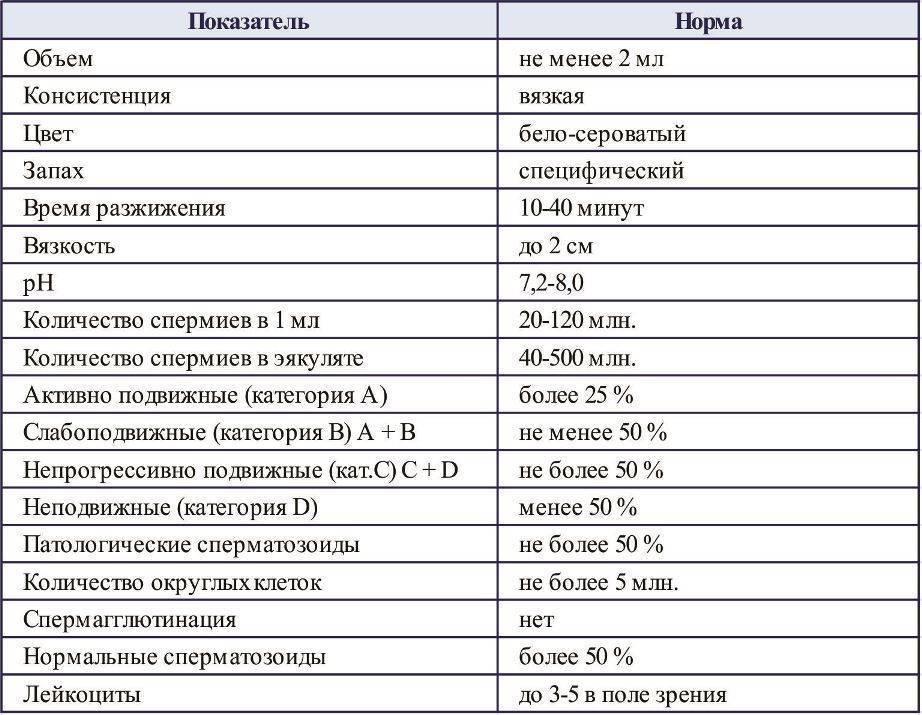 Спермограмма в москве, цена: сдать анализ в лаборатории днком