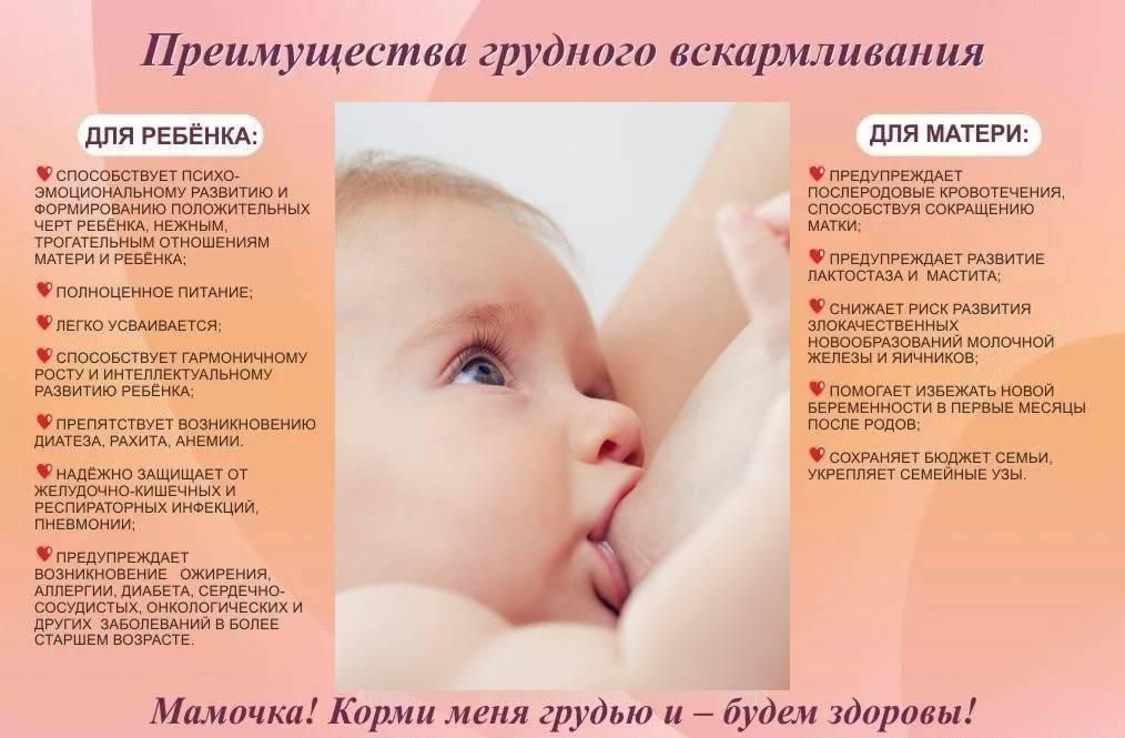 ➤ как отучить ребенка от грудного вскармливания