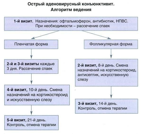 Конъюнктивит и насморк у ребенка: причины и лечение - энциклопедия ochkov.net