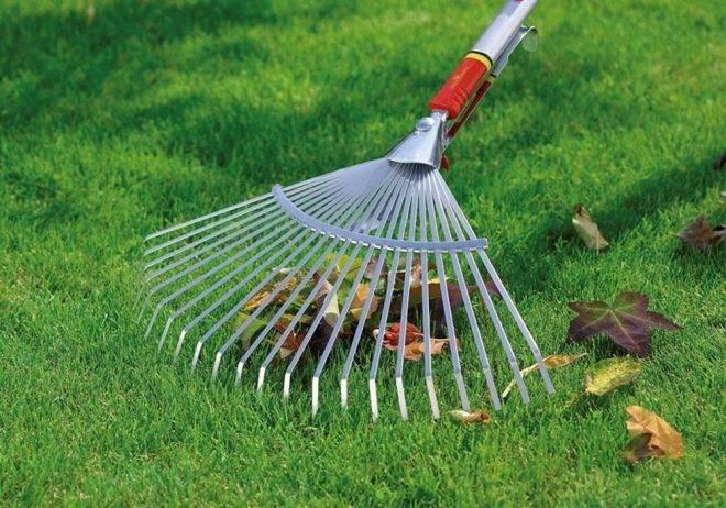 Грабли садовые: 105 фото типовых и узкоспециализированных инструментов