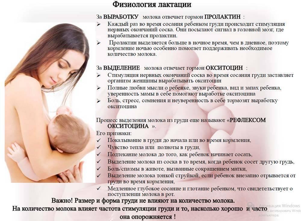 Повышение лактации у кормящих мам: средства, продукты и препараты