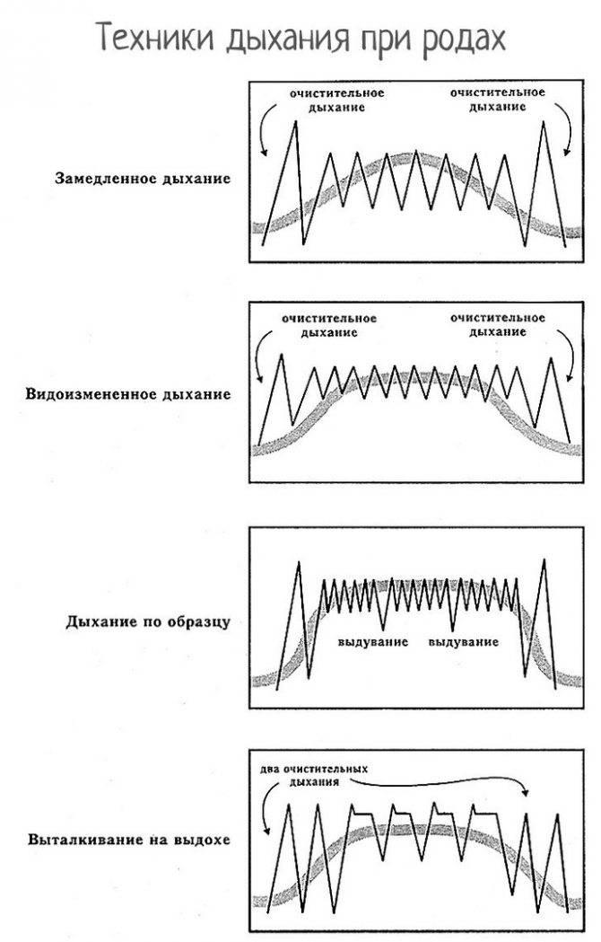 Дыхательная гимнастика при коронавирусе: инструкции :: здоровье :: рбк стиль