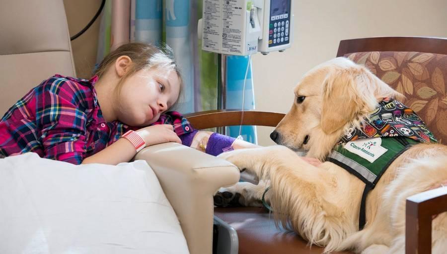 Как лечиться на дому пациентам с covid-19. памятка