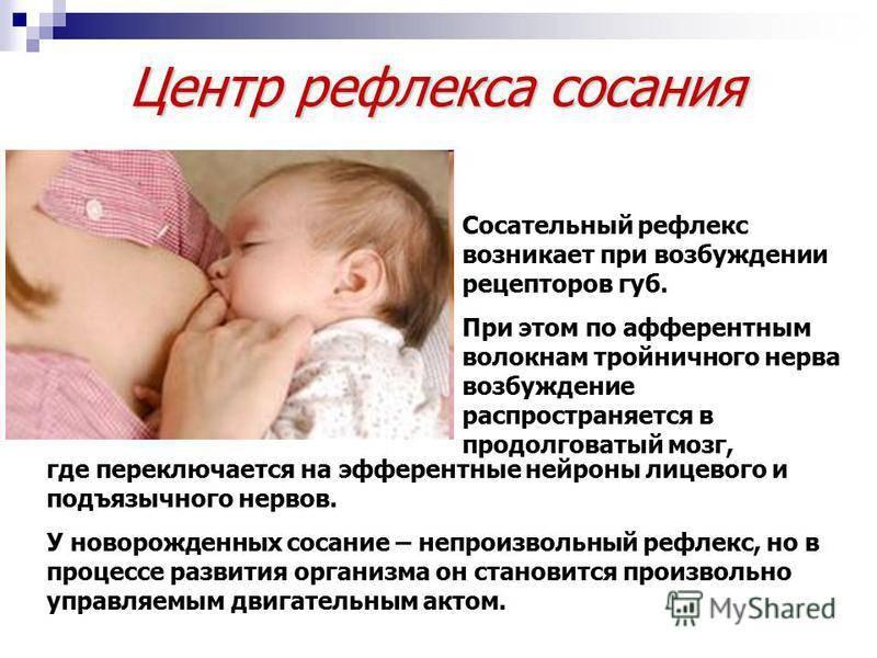 Отсутствие сосательного рефлекса у новорожденного лечение