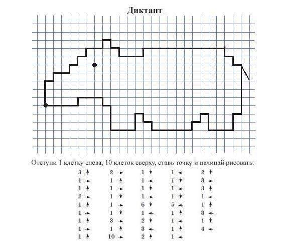 Графические рисунки по клеточкам. графические диктанты для детей в тетради 5-6-7-8-10 лет