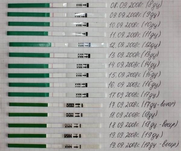 Все о тестах на беременность: виды, отличия и нюансы