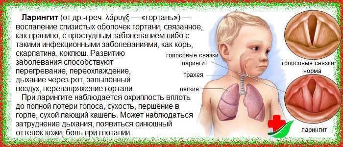 Почему у ребенка хрипы? причины и лечение - medical insider