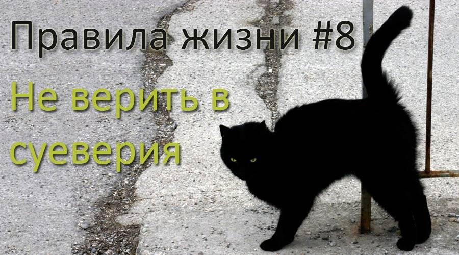 Эффект барнума: почему в xxi веке люди всё ещё верят в гороскопы и гадания | brodude.ru