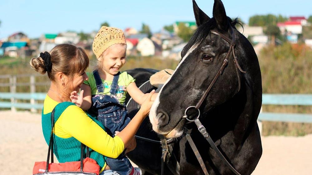 Лошади лечат людей: один день на занятиях иппотерапией