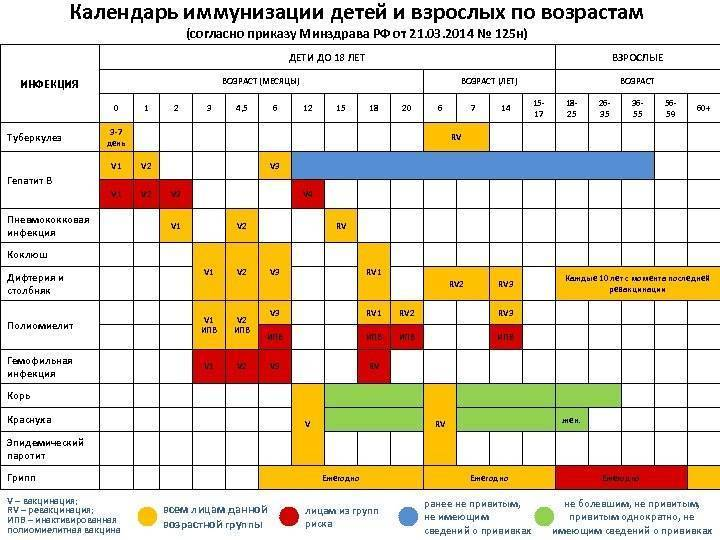 Календарь прививок детям, график вакцинации детей