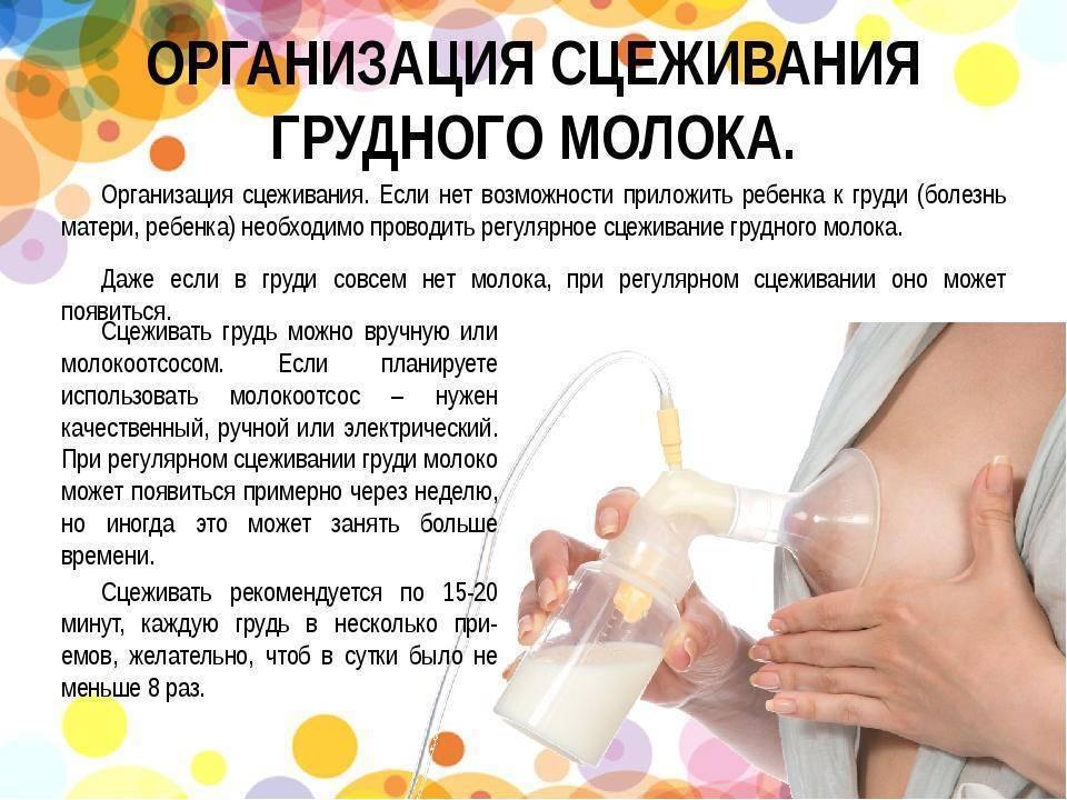Как правильно сцеживать грудное молоко руками в первые дни