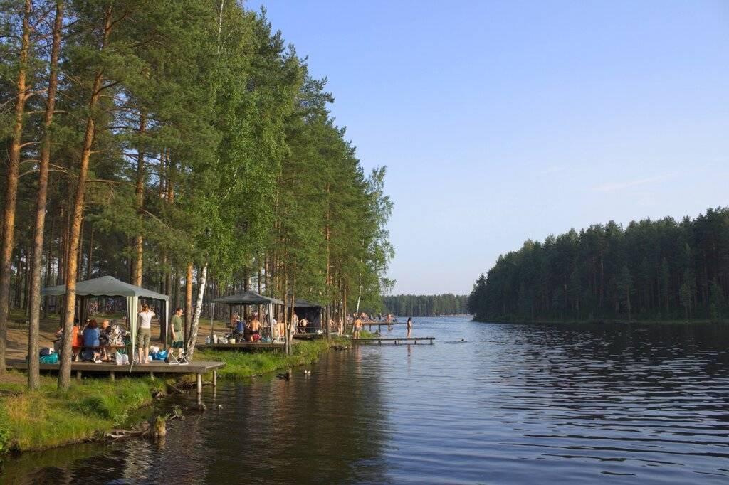 Где отдохнуть с палатками в ленинградской области? лучшие места для кемпинга