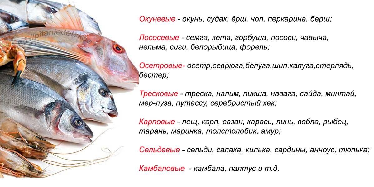 Рыбу ребенку когда ? какую ? сколько ? пюре из рыбы