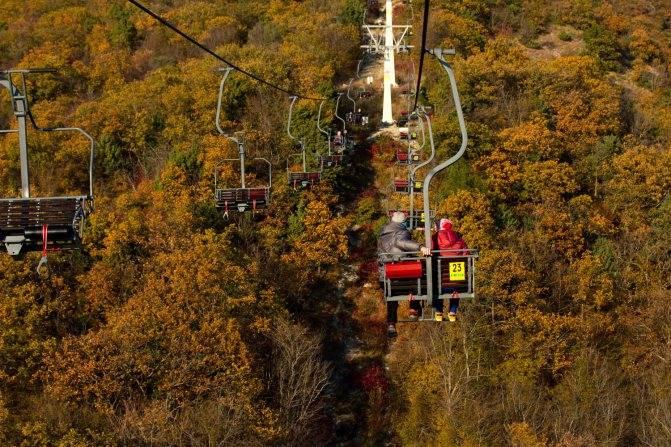 Парк олимп, геленджик. цены 2021, сайт, фото, видео, отзывы, отели рядом, как добраться – туристер.ру