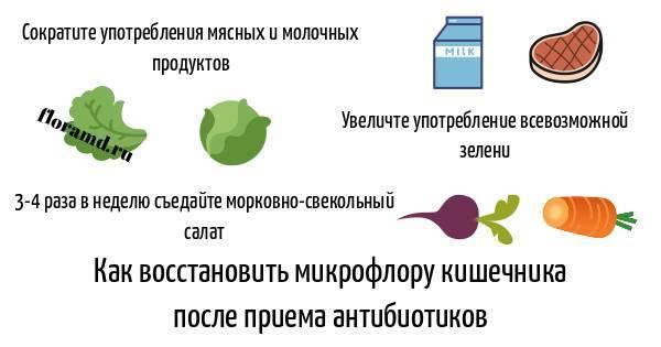 Диета после антибиотиков: как питаться и что включить в меню? пробиотики бак сет для восстановления организма взрослых и детей - дополнение к питанию после приема курса антибиотиков.  мульти-пробиотик бак-сет