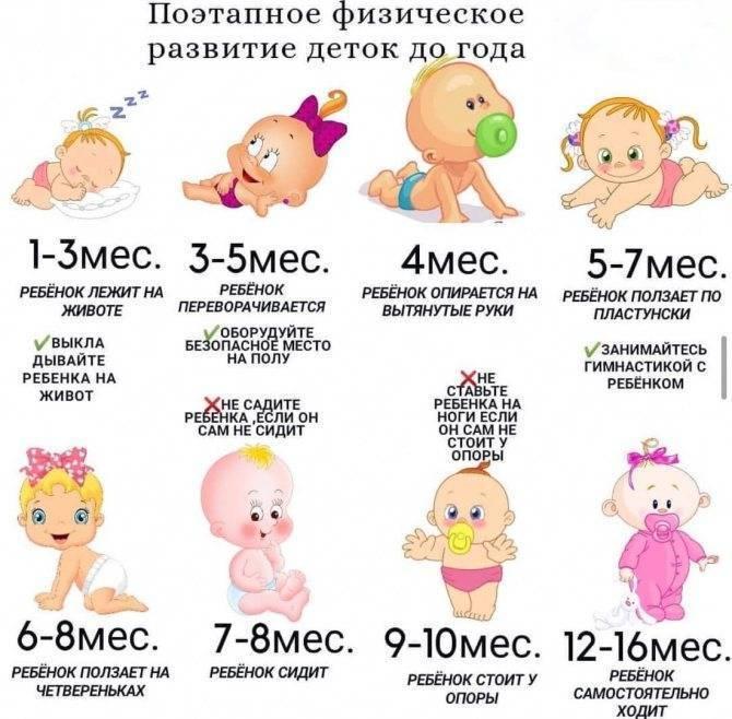 Развитие ребенка от 1 года до 2 лет: психология, возрастные нормы
