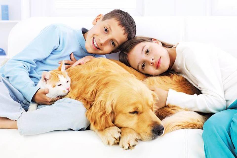От чижа и до ежа: выбираем лучшего домашнего питомца для ребенка