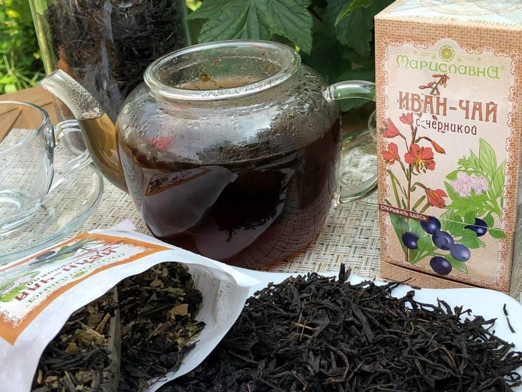 Иван-чай при беременности: описание и состав, польза и вред