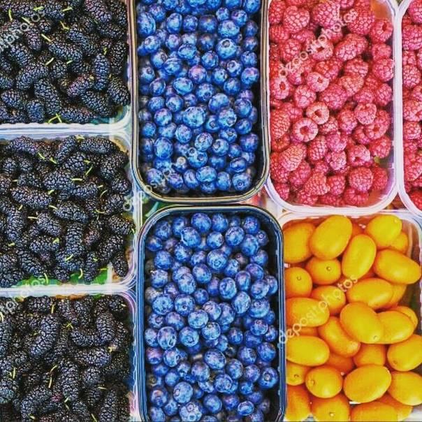 Брусника при грудном вскармливании: ценная ягода