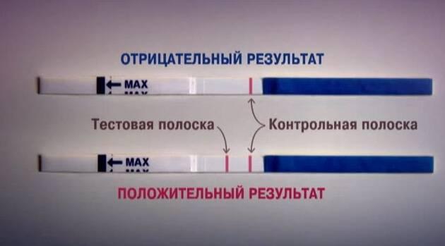 Тест на беременность ничего не показал: почему тест не показал полосок - что означает, если месячных нет