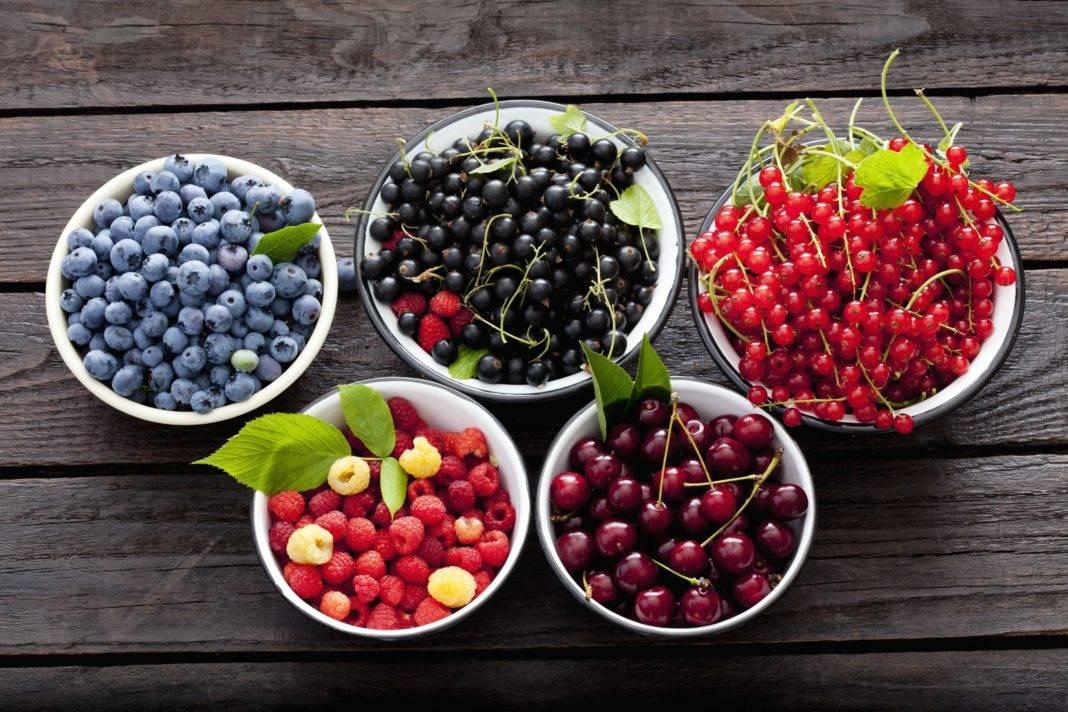 Какие ягоды можно при грудном вскармливании | консультант коуч-icta по грудному вскармливанию в минске 8(029)661-60-56