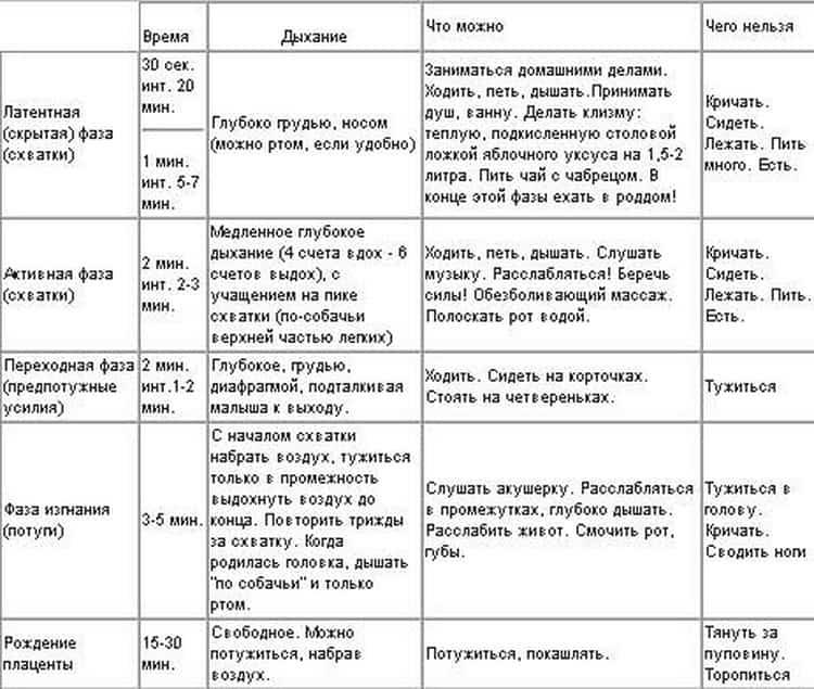 Как считать схватки перед родами — как правильно осуществлять подсчет? - wikidochelp.ru