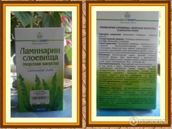 Ламинария для похудения : инструкция по применению   компетентно о здоровье на ilive