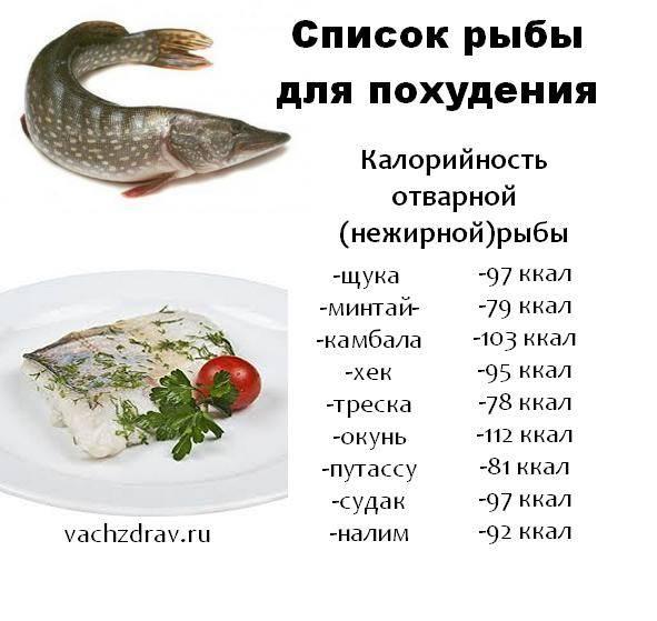 Рыба в рационе малыша: когда давать и как приготовить