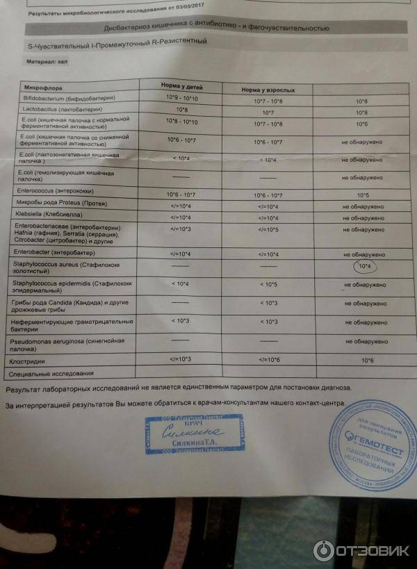 Норма и отклонения в микрофлоре кишечника