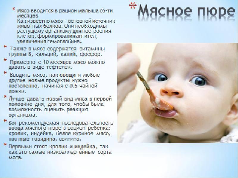 Мясо индейки: как ввести в прикорм малыша. правила введения прикорма: мясное пюре