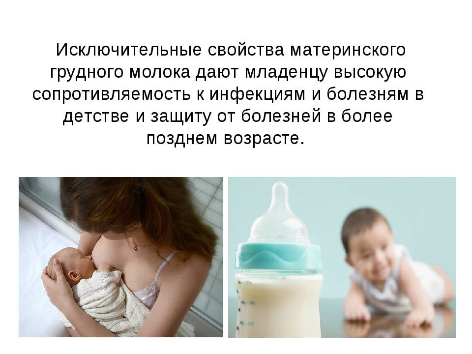 О заболеваниях,  передающихся через молоко
