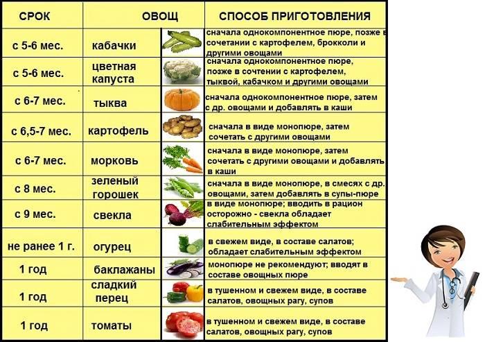 С какого возраста можно давать ребенку свинину: какие блюда приготовить, со скольки месяцев вводить в прикорм