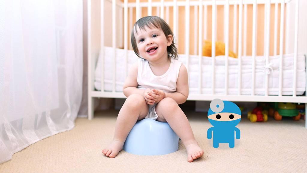 Как приучить ребенка к горшку в 1,5 года, лучшие методики и возможные проблемы