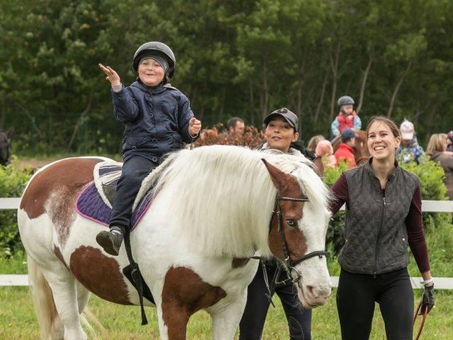 Лошади лечат людей: один день на занятиях иппотерапией   здоровье:здоровье детей   здоровье   аиф новосибирск