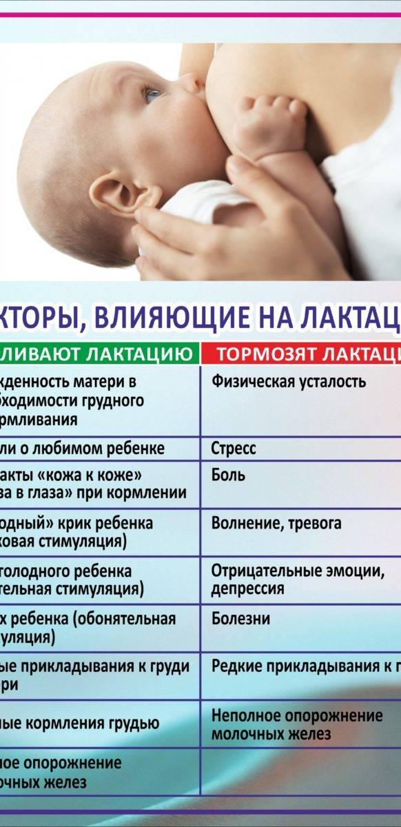 Витамины для кормящих мам: правила выбора   food and health