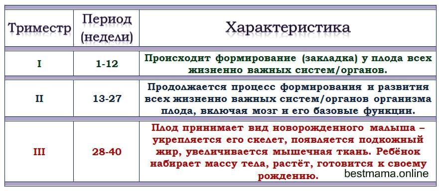 ᐉ какие недели в первом триместре самые опасные. самые опасные периоды беременности. консультации и рекомендации доктора - ➡ sp-kupavna.ru