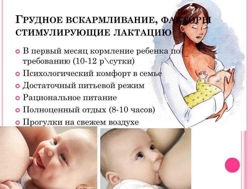 Все, что необходимо знать о месячных во время кормления грудного ребенка