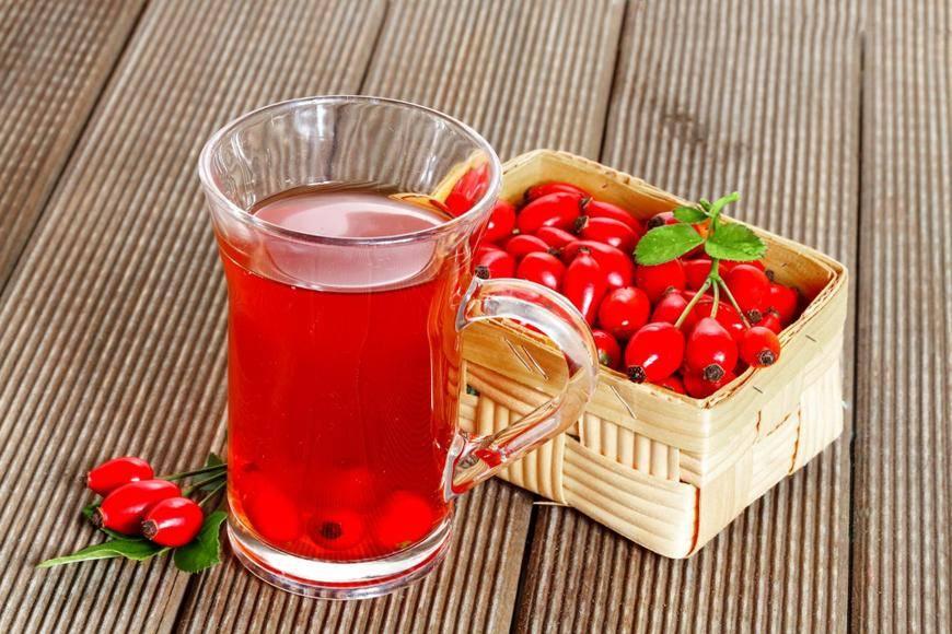 Цикорий: польза, вред и влияние на организм цикория