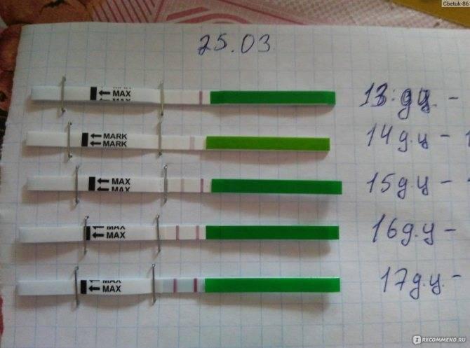 Тест на беременность после задержки месячных: когда делать, что покажет, фото
