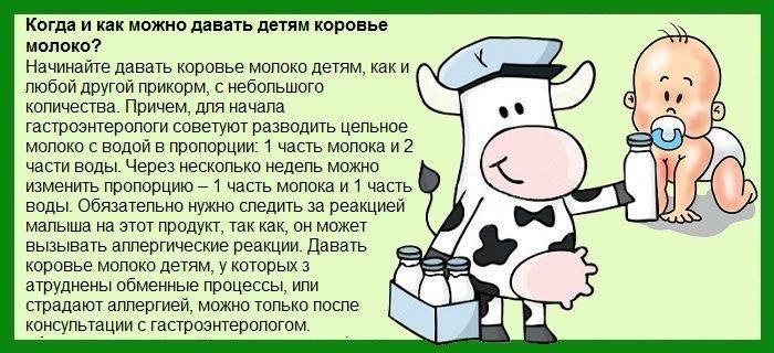 Коровье молоко для новорожденных, почему не подходит грудничкам? с какого возраста его стоит давать детям? — life-sup.ru