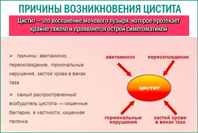Шеечный цистит. признаки и методы лечения болезни