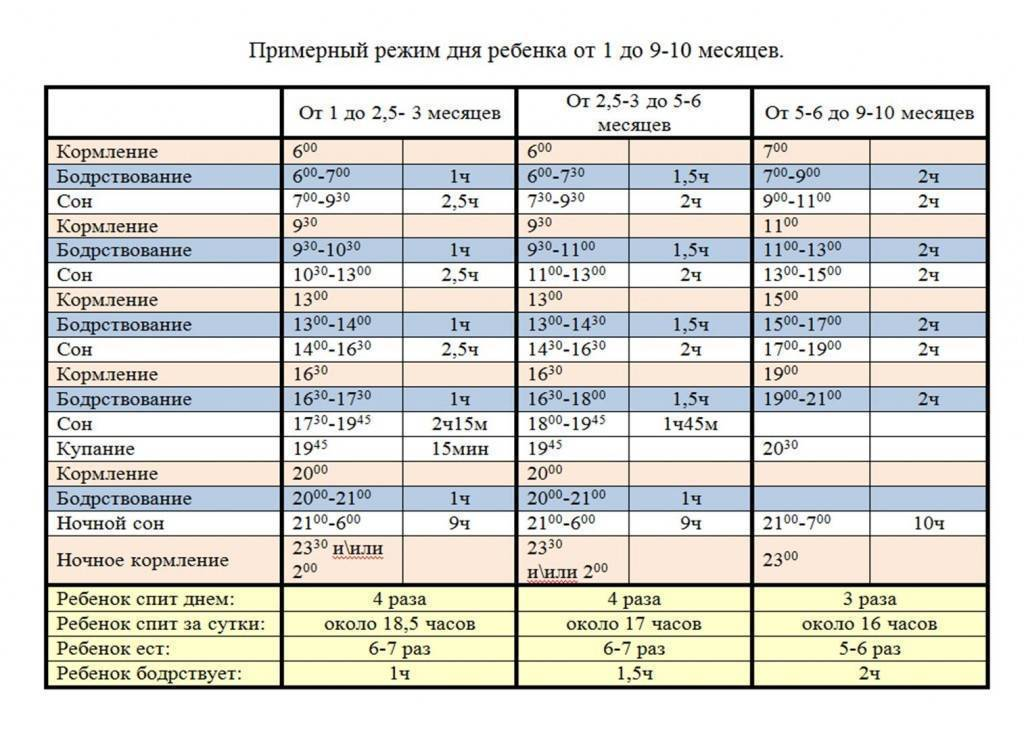 Режим дня ребенка в 9 месяцев по часам, таблица. распорядок дня