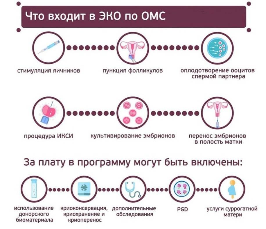 Искусственное оплодотворение - цена, искусственная инсеминация донорской спермой в москве