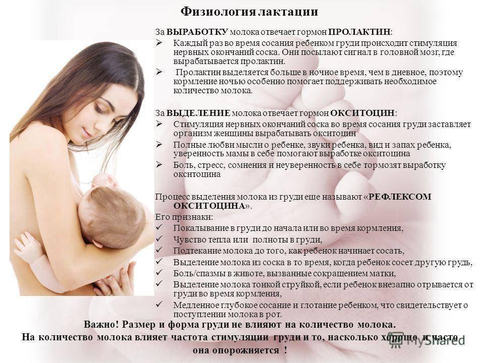 Как увеличить лактацию (количество молока) при грудном вскармливании