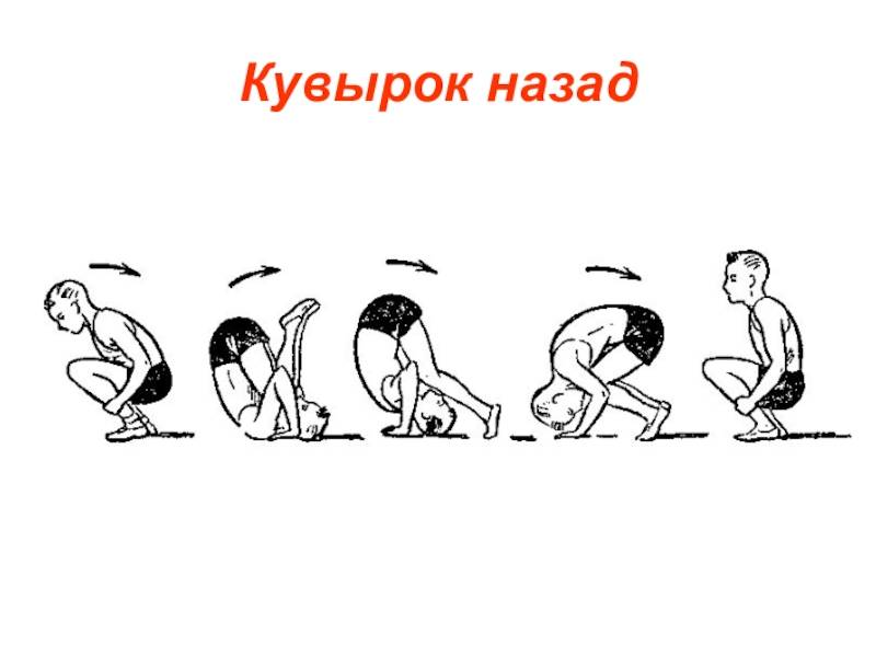 ✅ как правильно делать кувырок вперед - veloexpert33.ru