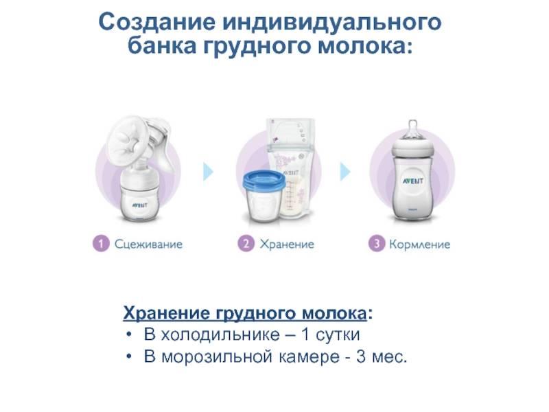 Сколько можно и как хранить грудное молоко (после сцеживания)