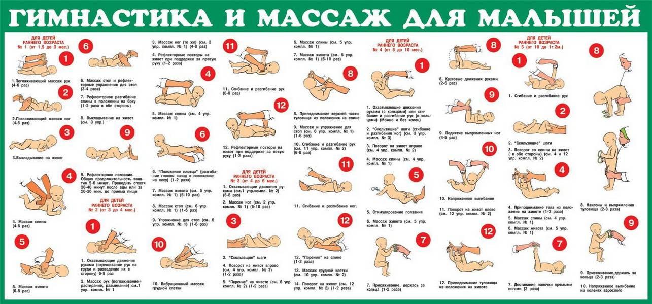 Динамическая гимнастика для грудничков: с чего начать? кручу-верчу? динамическая гимнастика для малышей.
