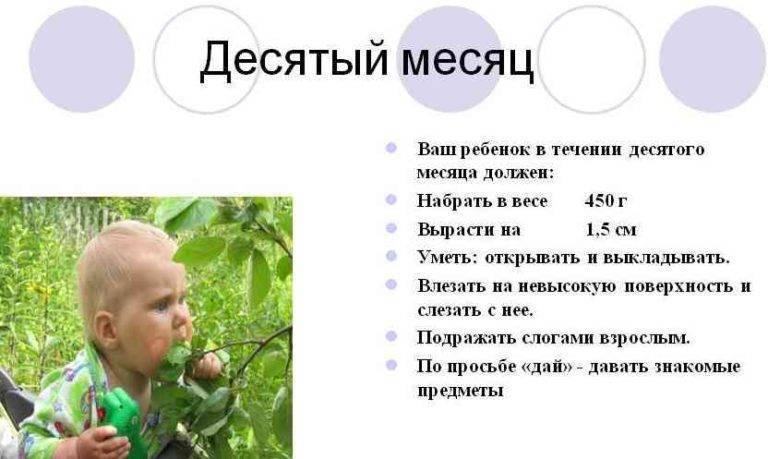 Ребенку 5 месяцев - автор екатерина данилова - журнал женское мнение